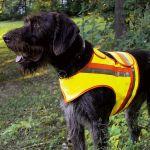 AKAH Reflektorweste für Hunde