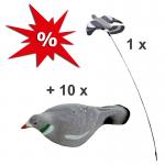 Lockvogel Set für die Taubenjagd