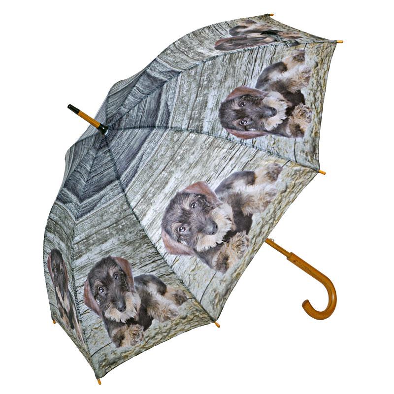 Regenschirm mit Dackel-Motiv